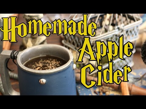 Apple Cider DIY for Your Halloween Party or Harry Potter Lifestyle - Holly Hobby