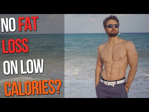 Why You Are Not Losing Fat? (Even on Low Calories)