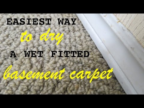 How to ● Dry a wet fitted carpet in your basement with little effort