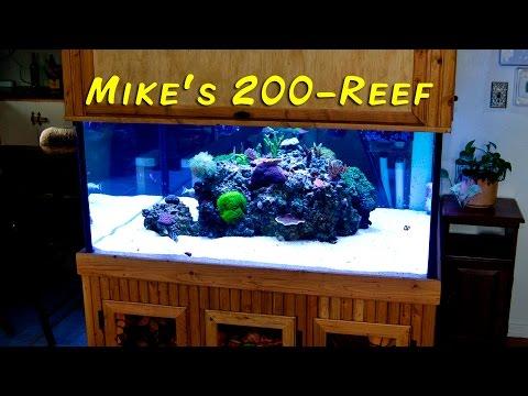 Michael Crawford's 200-gallon Reef