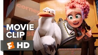 Storks Movie Clip Did You Catch The Game Last Night 2016 Andy Samberg