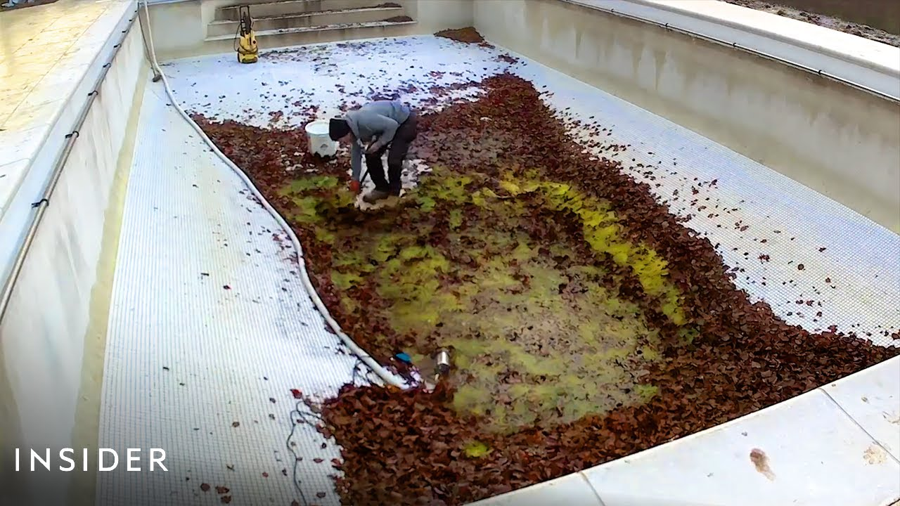 How Pools Are Professionally Deep Cleaned | Deep Cleaned