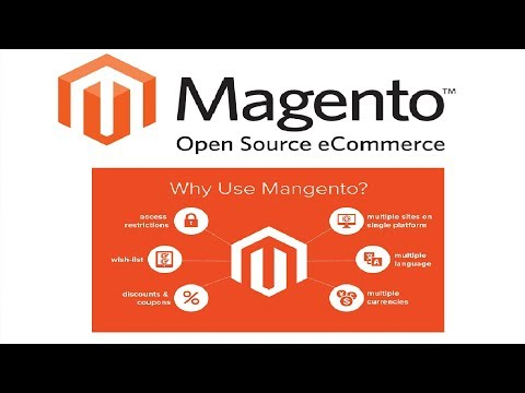How to Setup Paypal Payment Gateway to Accept Payment from the Customers in Magento-24 Hindi/URDU
