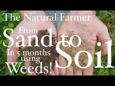 John Kaisner The Natural Farmer - Tropics - #21 How to Fix Sandy Soil Using Weeds