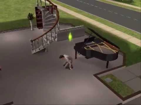 Sims 2 Ninja