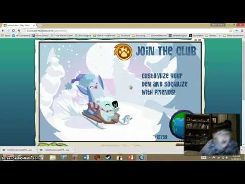 Animal Jam Free Diamond Code and Secret Eagle Adventure