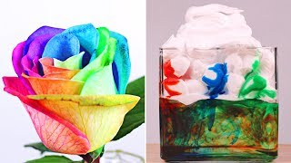 Download 5 Amazingly Cool DIY Science Experiments | Easy & Fun Science Ideas By HooplaKidz Lab Video