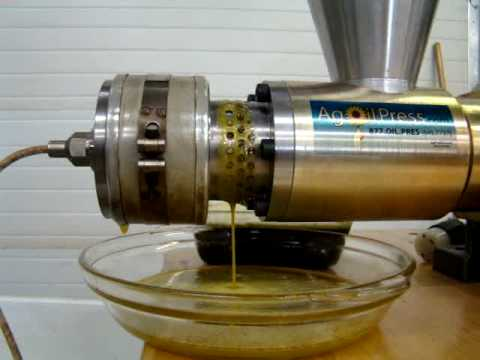 Flax Seed Oil Extraction: Full Speed