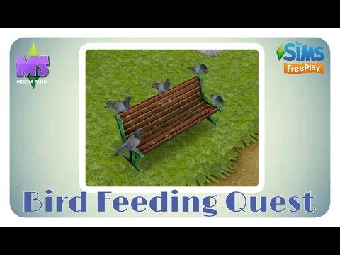 The Sims Freeplay - Bird Feeding Quest