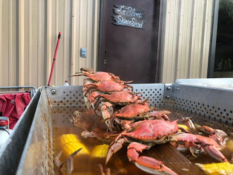 How to Boil Blue Crabs Louisiana Style.