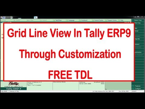 Grid Line View In Tally ERP9  Through Customization (FREE CUSTOMIZATION)