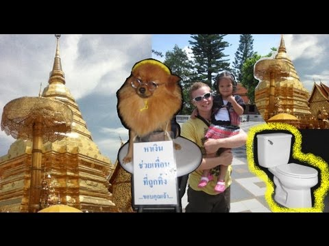 (Chiang Mai) Toilets and (Wat Phrathat Doi Suthep) Fortunes
