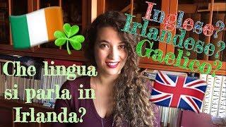 Che lingua si parla in Irlanda? Irlandese? Gaelico? Inglese?