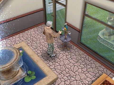 Bird Feeding Quest- Sims FreePlay All Grown Up Update
