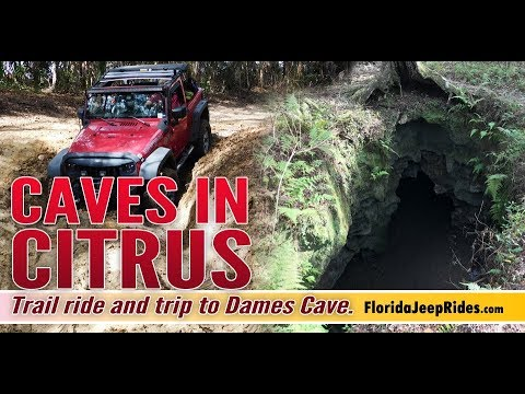 Jeep Ride through Citrus WMA with a visit to the caves. Jan 2019