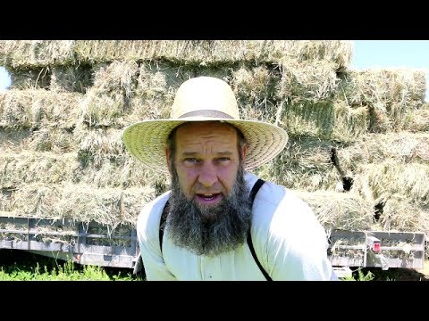 MOVING 15,000 POUNDS OF HAY BY HAND