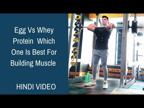 Egg Vs Whey Protein | Which One Is Best For Building Muscle | Benefits of Egg and Whey Protein