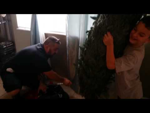 Setting Up A Real Christmas Tree With The Little Guy Trucker