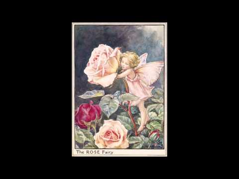 Cicely Mary Barker ~ Flower Fairies of the Summer