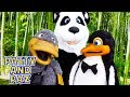 Patty and Paz MEET THE CUTE PANDA 🐼 Kids Shows | Animals for Kids | Funny Animated cartoons Kids