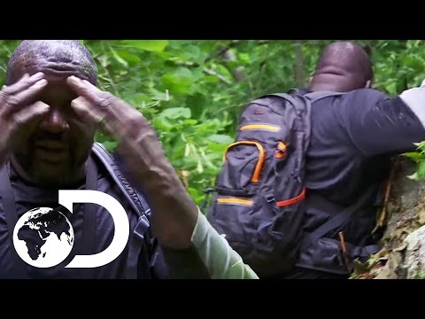 Shaquille O'Neal Falls off A Cliff | Running Wild with Bear Grylls