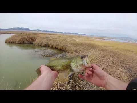 One of the best days fishing - Blue lake Utah