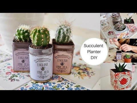 DIY succulent planter using vintage style tins
