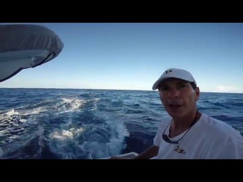 Episode 4 DR to DR (Samana to Cap Cana) Leopard 48