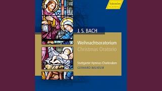 Christmas Oratorio Bwv 248 Part Ii Und Alsobald War Da Bei Dem Engel  Evangelist
