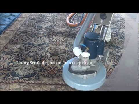 Rug Cleaning | Steam Cleaning | Deodorising | Sanitising | Best 1 Cleaning & Pest Control