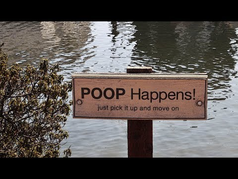 YOU WILL STEP IN YOUR DOG'S POOP SOON!!!