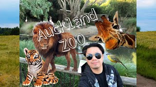 Auckland Zoo/ New Zealand travel guide