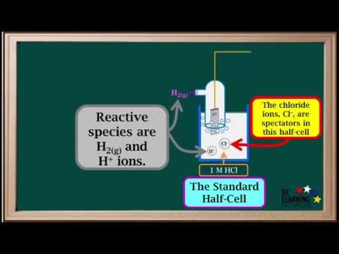 BCLN - Electrochemical Cells Involving Gases-Example 1 - Chemistry