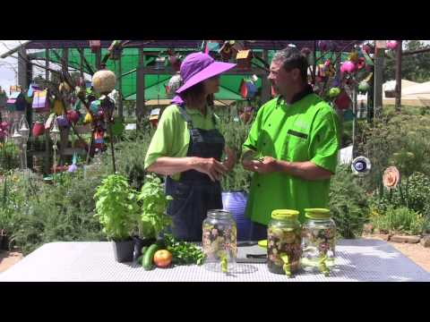 How to Make Infused Water: Cucumber and Basil Recipe with Chef Chris