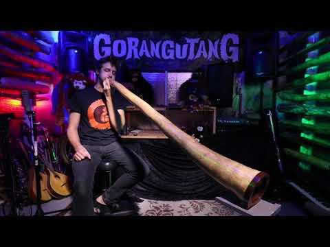 Agave Multidrone Didgeridoo in Eb - AG007