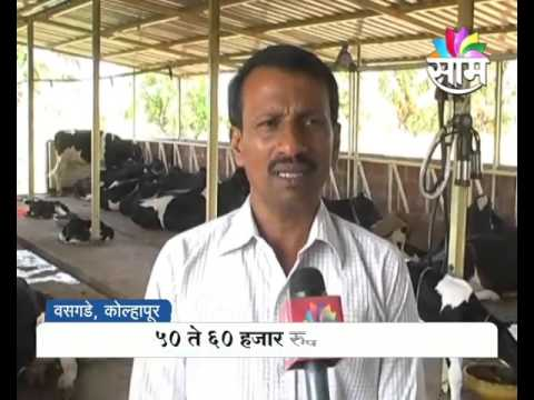 Sucess Story of Shinde Family : Milk Production as Side Business in Kolhapur