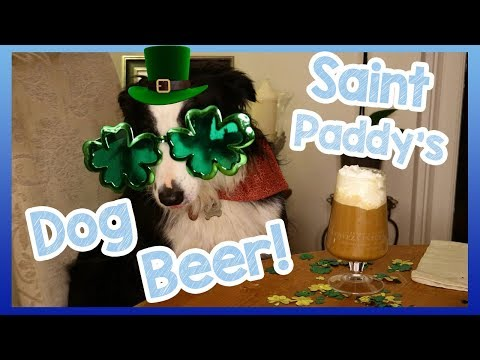 DIY BEER FOR DOGS! Special Saint Patrick's Day Beer Recipe for Dogs! How to Make Doggy Beer! ☘️🐶🍺