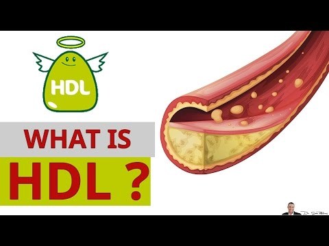 What Is HDL Cholesterol & Why it's Called The Good Cholesterol?