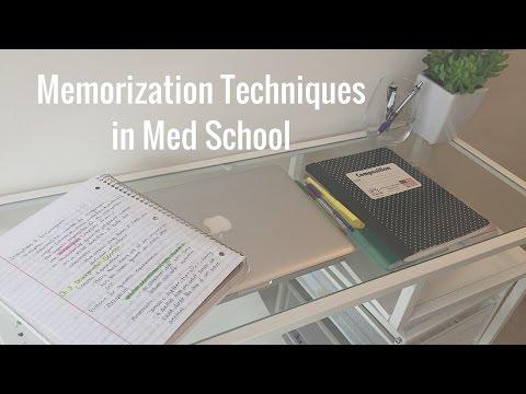 Memorization Techniques in Medical School   White Coat Chronicles