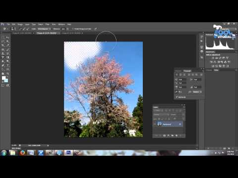 How to use Background Eraser tool in Photoshop CS6