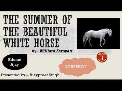 The Summer of the Beautiful White Horse (Hindi) By William Saroyan Class11 Snapshot English(Summary)