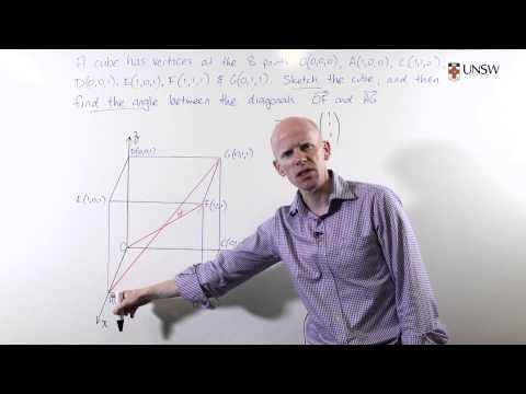 Angle Between Diagonals of a Cube (Ch2 Pr3)