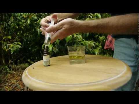 How to Make Essential Oils | Essentially Australia