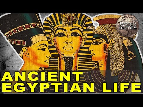 Xxx Mp4 Ancient Egypt What Everyday Life Was Actually Like 3gp Sex