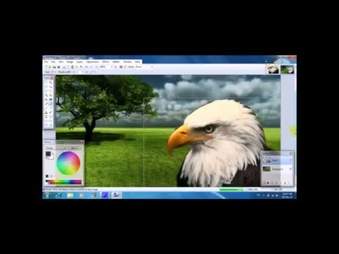 Paint.NET Tutorial : How To Change The Background