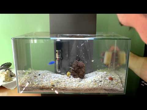 How to clean inside of the aquarium.