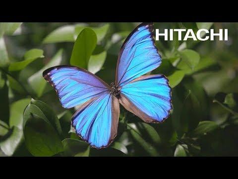 The World's Highest Resolution Electron Microscope - Hitachi