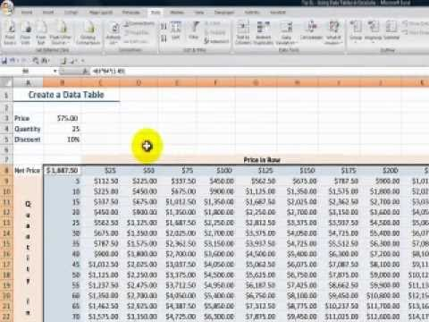 How to Use an Excel Data Table for