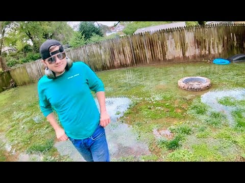 How To Maintain A FLOODED Yard