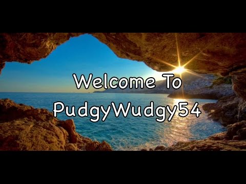 Welcome To PudgyWudgy54